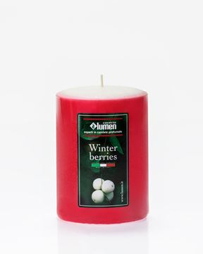 candela 7x10 winter berries